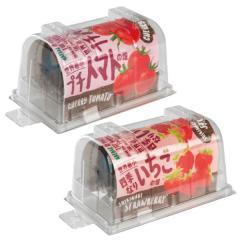 【送料無料】世界最小のやさい畑 プチトマト&四季なりいちご