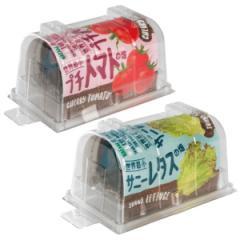【送料無料】世界最小のやさい畑 プチトマト&サニーレタス