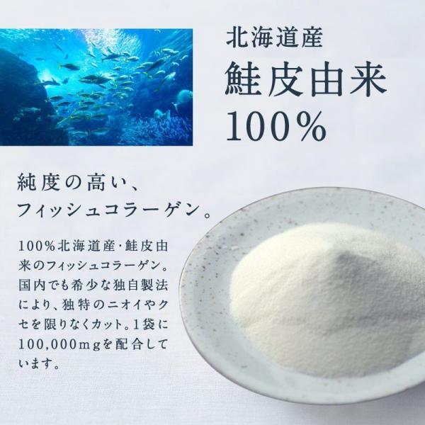 10%OFFクーポン対象商品 【送料無料】こなゆきマリンコラーゲン 100g 高純度 低分子 フィッシュ コラーゲン ペプチド 肌 美容 保湿 粉末 サプリ <メール便 送料無料> クーポンコード:KZUZN2T