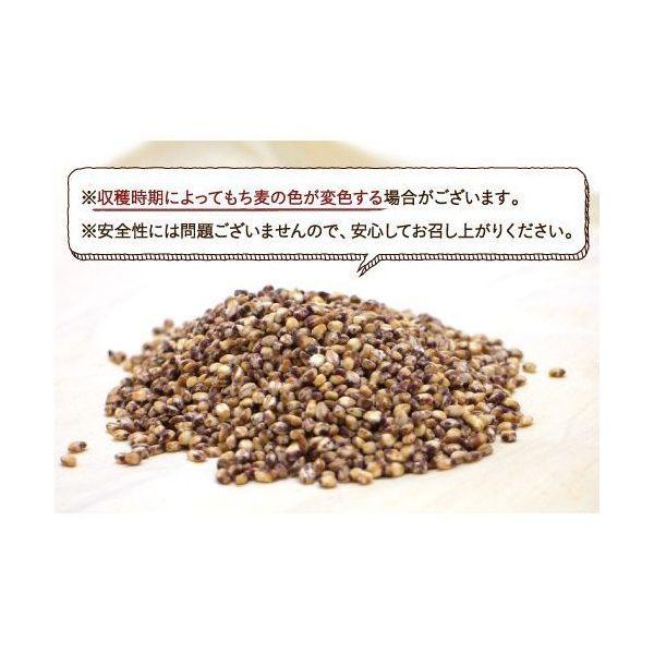 【送料無料】もち麦 国産 5kg雑穀 食物繊維 もちむぎ ごはん 麦ご飯 大麦 ダイエット TV放送 <メール便可>