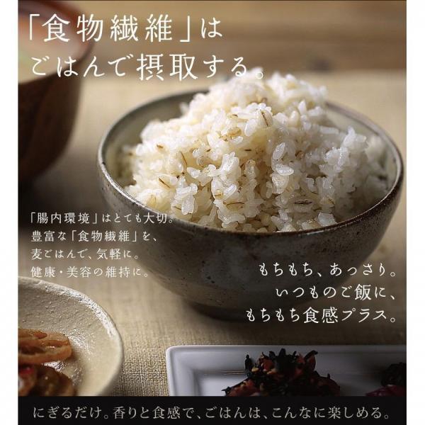 【送料無料】もち麦 国産 500g 雑穀 食物繊維 もちむぎ ごはん 麦ご飯 大麦 ダイエット TV放送 <メール便可>
