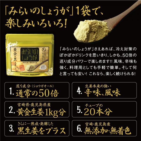 【送料無料】みらいのしょうが 70g 九州産黄金 しょうが粉末 生姜粉末 乾燥 生姜 蒸し しょうが ジンジャー パウダー 無添加 <メール便可>
