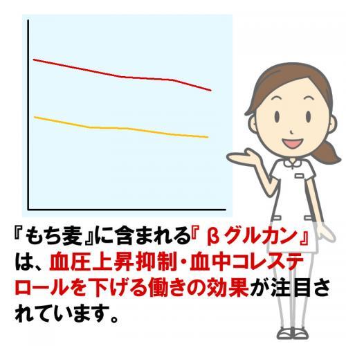 【もち麦】お米と同梱なら送料無料!(同梱1袋まで) 今TVで話題!貴重な国産100%もち麦kg