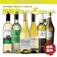 ワインセット コスパ抜群!世界の味が味わえる白ワイン6本セット (送料無料)