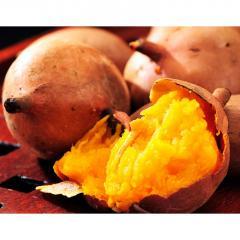 送料無料【3/2~7出荷】 芋 安納芋 種子島産 安納紅芋 訳あり小玉 約1.5kg×3箱 合計4.5kg アウトレット