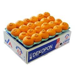 送料無料【4/13~18出荷】 柑橘 みかん 糖度13度選別 熊本県産 デコポン 約5kg 15~24玉