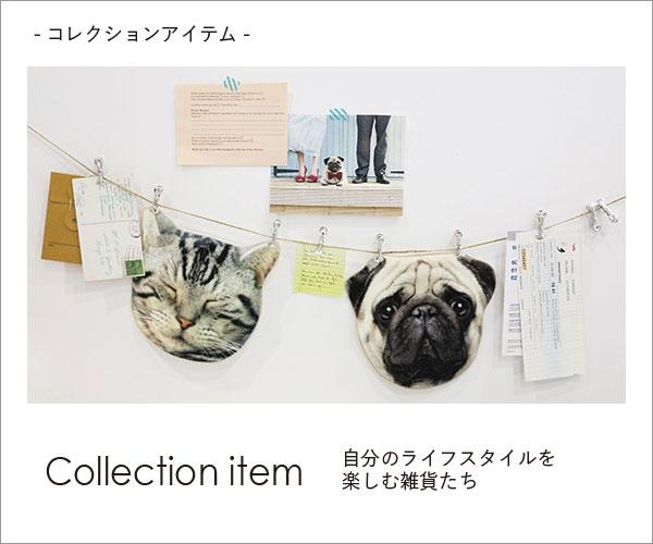 01コレクション