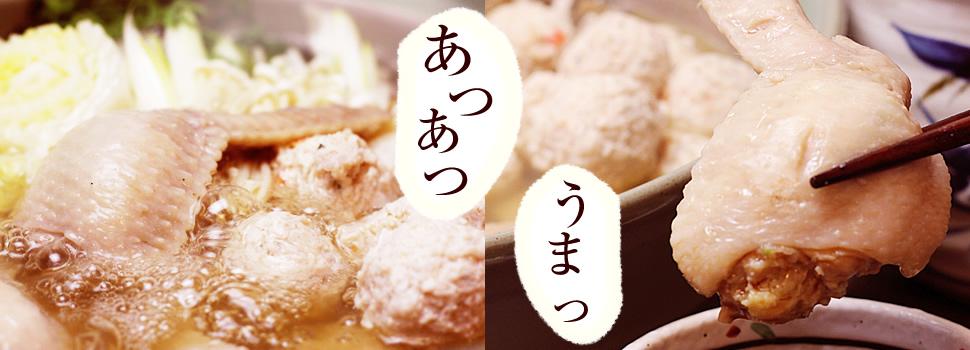 手羽餃子鍋