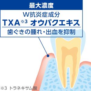 W抗炎症成分が、歯ぐきの腫れ・出血を抑制