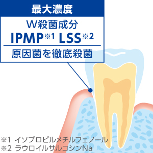 W殺菌成分が、歯周病の原因菌を徹底殺菌!