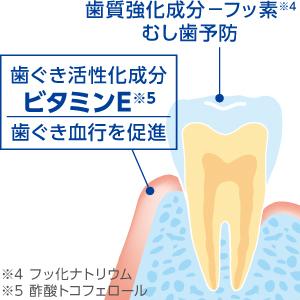 歯ぐき活性化成分