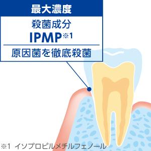 殺菌成分が、歯周病の原因菌を徹底殺菌!