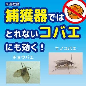 蚊 がい なくなる スプレー コバエ