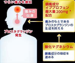 특징 2 : 괴로운 두통에 '높은 효과'이브 퀵 두통약 DX