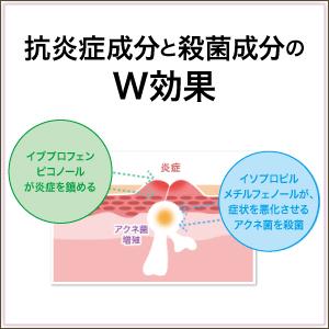 여드름을 치료하는 유효 성분의 W 효과가 일하는 여드름 약