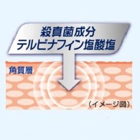 무좀의 원인균이 뛰어난 도살 곰팡이 힘 라미시루 플러스 ®