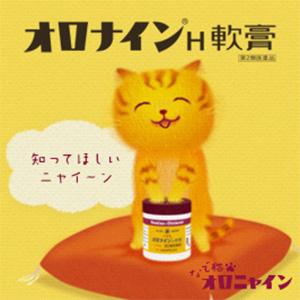 【제 2 류 의약품】 오오츠카 제약 오로 나인 H 연고