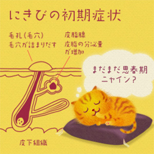 【제 2 류 의약품】 오오츠카 제약 오로 나인 H 연고 / 여드름