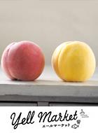 【全品送料無料】赤桃と黄桃の旬!どちらも美味しい桃。