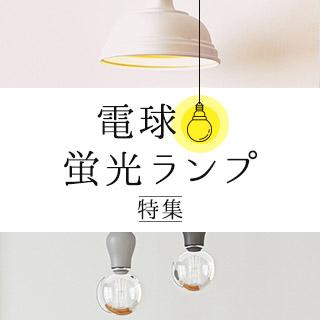 電球・蛍光ランプ特集