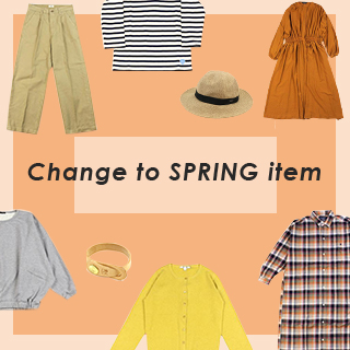 Change to SPRING item