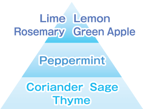 Lime Lemon Rosemary Green Apple/Peppermint/Coriander Sage Thyme
