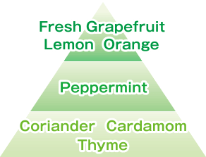 Fresh Grapefruit Lemon Orange/Peppermint/Coriander Cardamom Thyme
