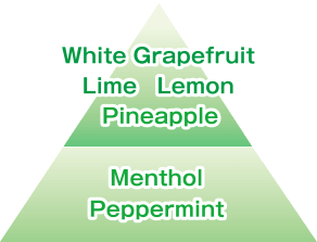 White Grapefruit Lime Lemon Pineapple/Menthol Peppermint