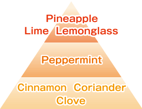 Pineapple Lime Lemonglass/Peppermint/Cinnamon Coriander Clove